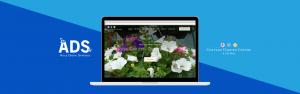 cottage garden centre - agile digital strategy